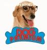 Dog Premium